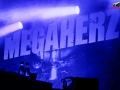 Monster-Festival-2014-Megaherz-101